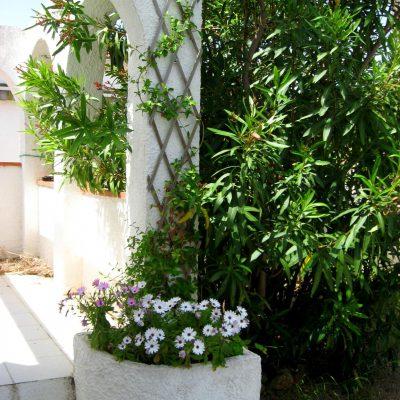 Garten Ferienhaus Casa Äsche, Detailansicht bei Eingang mit Blumen und Oleander