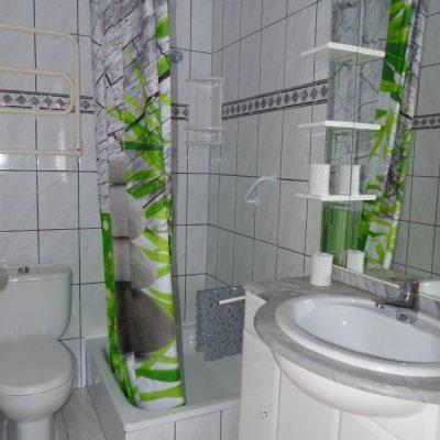 Bad mit Dusche Ansicht 2